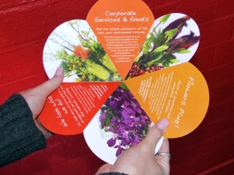 Red Petal Brochure Design