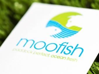Moofish Brand Identity & Graphic Design
